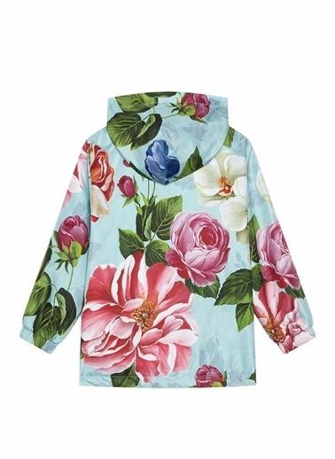 Dolce&Gabbana Ceket Renkli